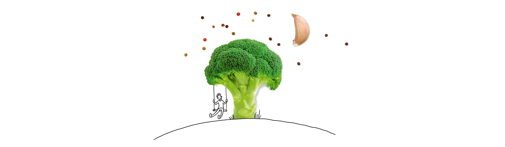 Broccolibaum